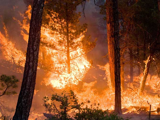 Whitewater-Baldy Complex Fire in New Mexico on 06 June 2012