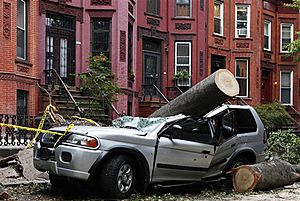 Crushed car as the result of a fallen tree during a macroburst in New York City on 16 September 2010