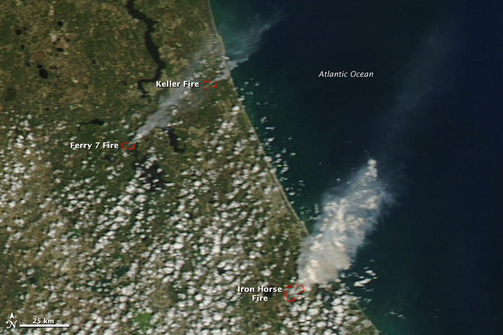 Florida Wildfires