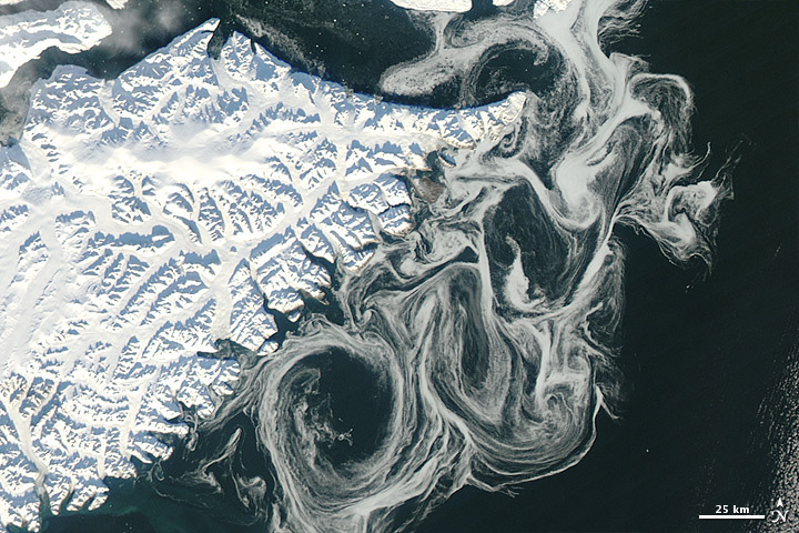 Sea ice swirled off Greenland on 17 October 2012