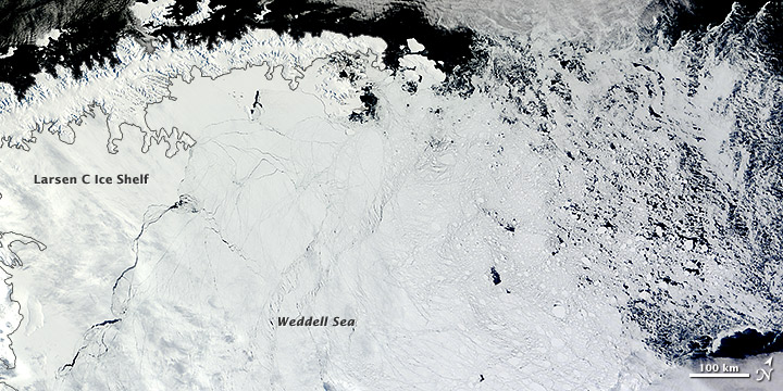 Antarctic Ice Formed in Weddell Sea during February 2013