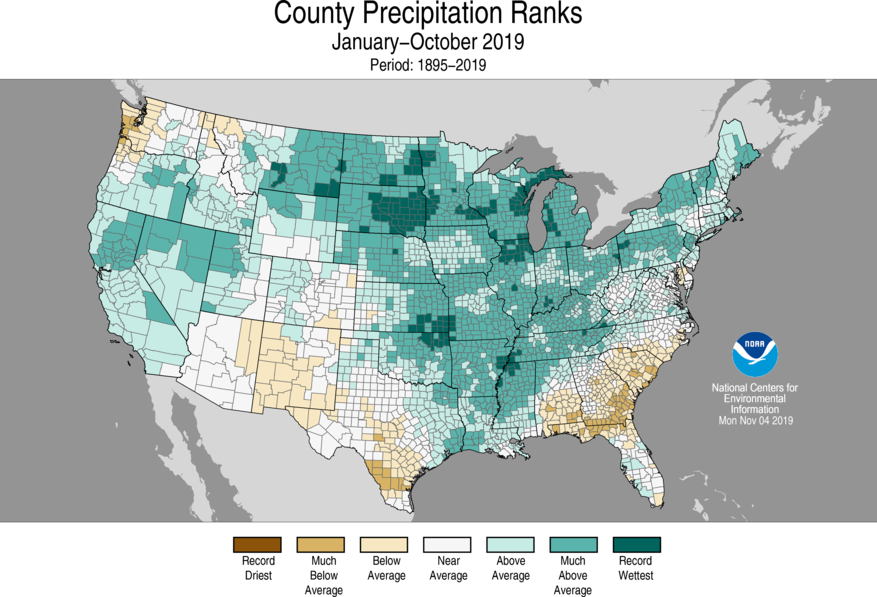 Year-to-Date County Precipitation Ranks