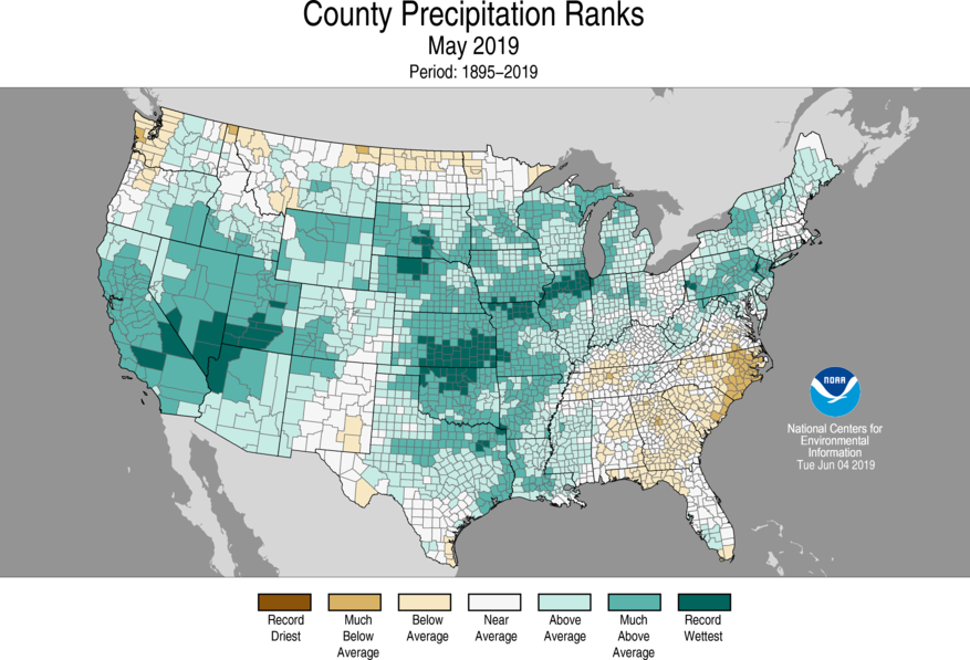 12-Month County Precipitation Ranks