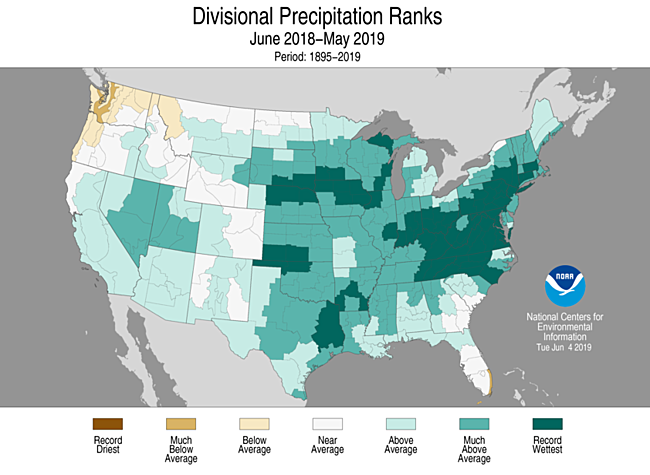 12-Month Divisional Precipitation Ranks