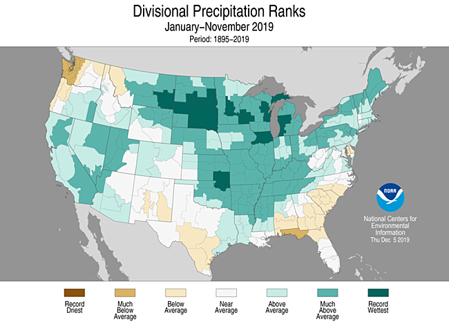 Year-to-Date Divisional Precipitation Ranks