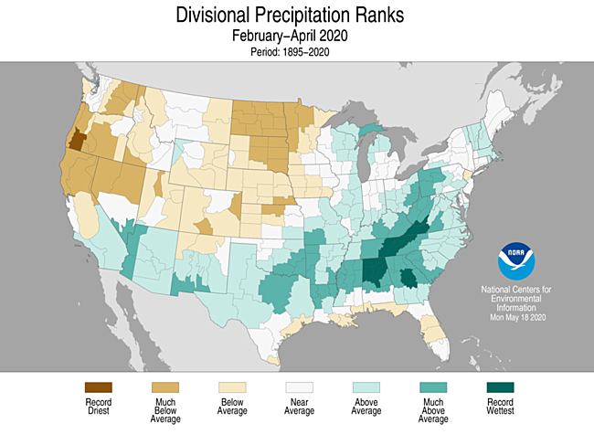 3-Month Divisional Precipitation Ranks