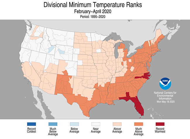 3-Month Divisional Minimum Temperature Ranks