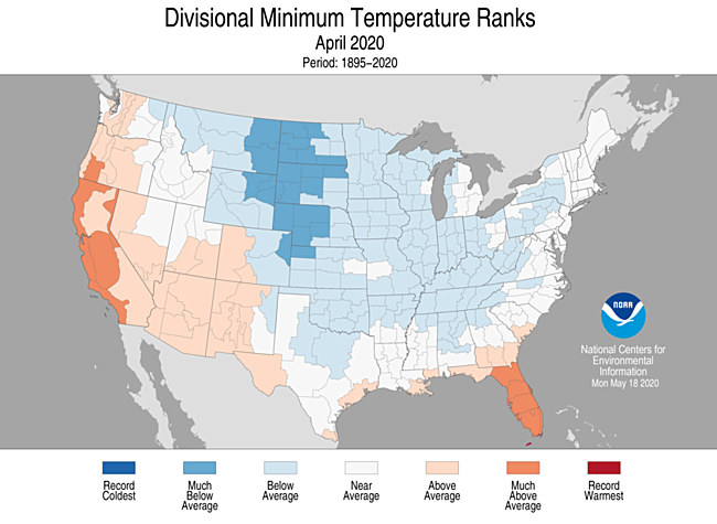 1-Month Divisional Minimum Temperature Ranks
